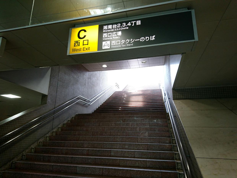 DSC_2728-1400.jpg